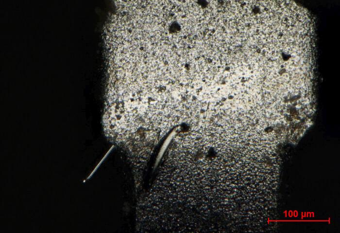 Feinste einkristalline Zinnnadeln (Whisker) unterm Mikroskop